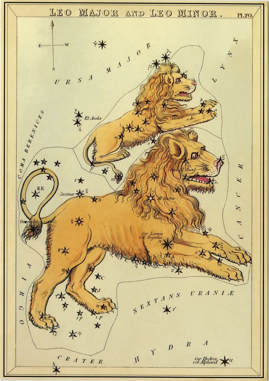 Leo image - from The Box of Stars