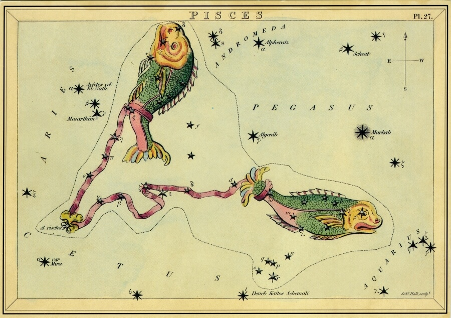 Pisces image - from The Box of Stars