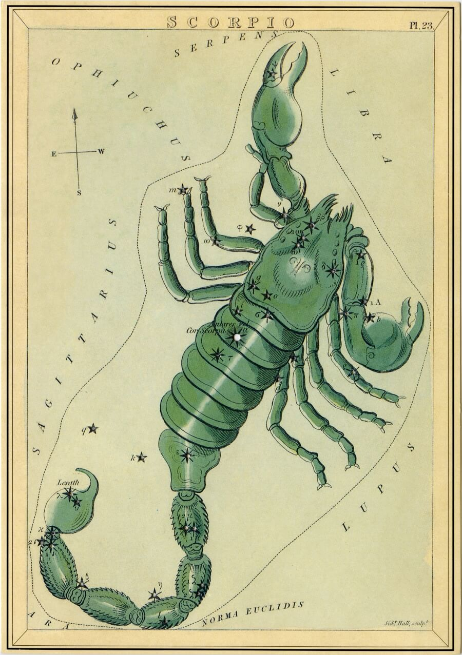 Scorpio image - from The Box of Stars