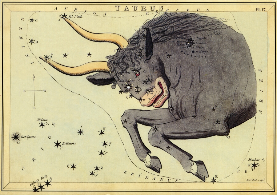 Taurus image - from The Box of Stars